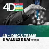 4D Report - DISC, TEAMS, Values, BAI
