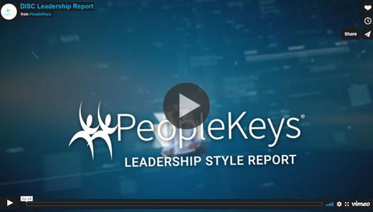 DISC-Leadership-Report