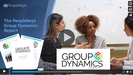 group-dynamics-report